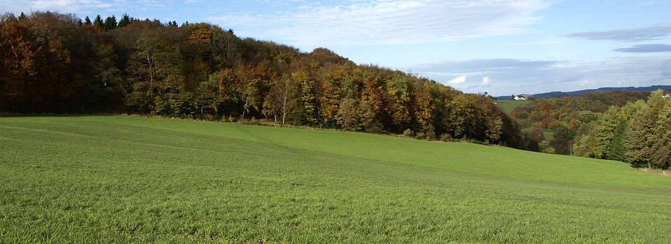 Die IHK in Südwestfalen fordert: Energiemix beibehalten