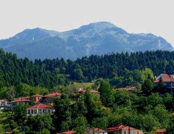 Umweltschützer gegen Landschaftszerstörung in Griechenland