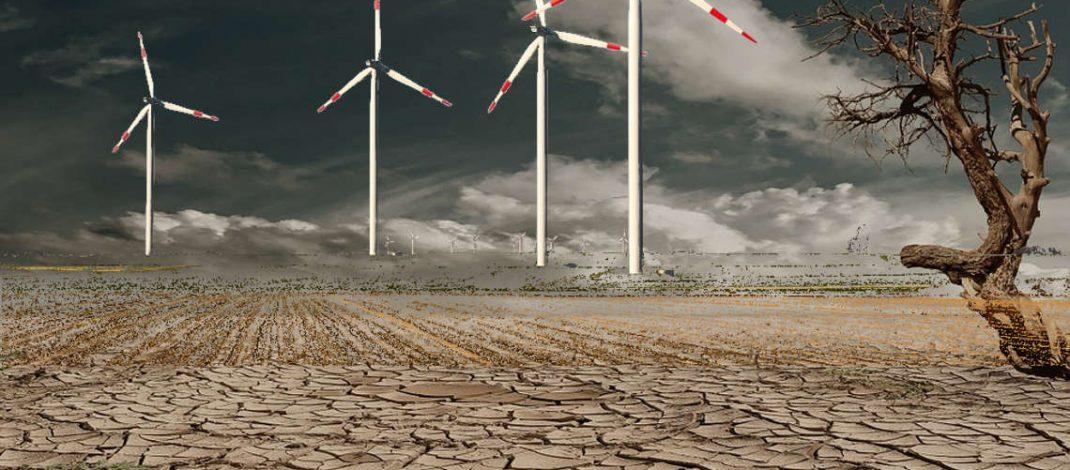 """Windparks sind die """"neuen Spitzenraubtiere"""""""