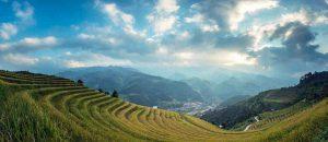 China sasint